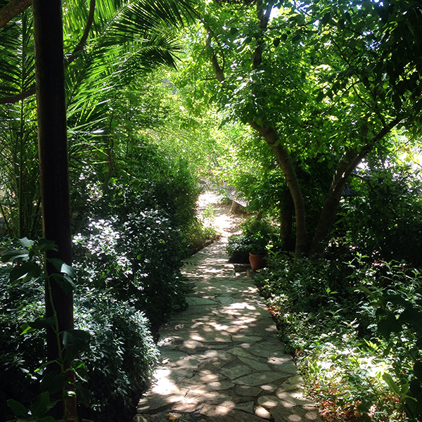 Path through the retreat – Huzur Vadisi